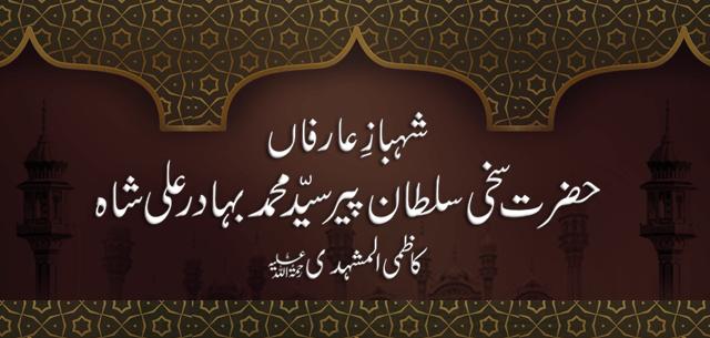 bahadur ali shah